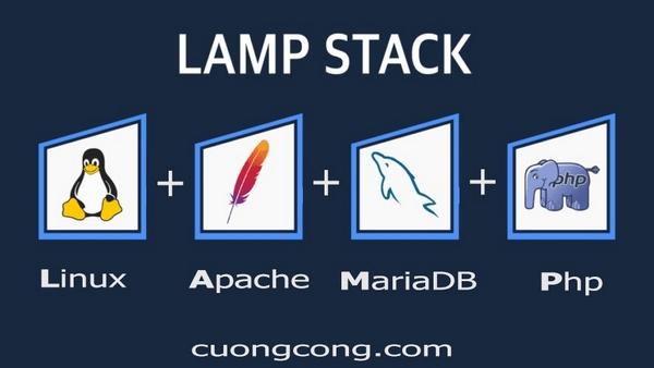 cài đặt LAMP stack trên CentOS 8