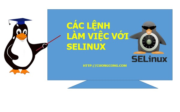 Read more about the article Các lệnh của SELinux – Chế ngự SELinux không khó